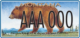 Vital Ground license plates