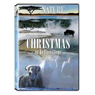 ChristmasinYellowstone